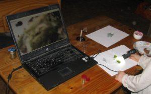 Dětský výzkum s USB mikroskopem - foto Josef Mareyi