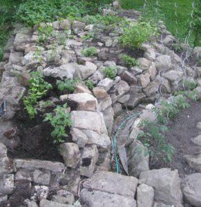 Pochozí pěstební skalka s korytem závlahy - foto Josef Mareyi