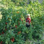 Naprostý ráj pro děti :)