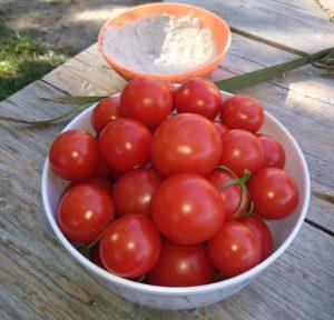 Menší plody rajčat typu Bejbino či Nostalgie